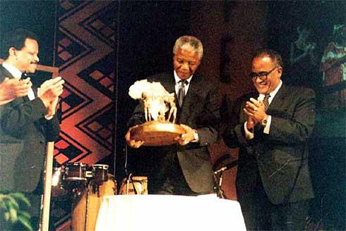 Mandela APA 1