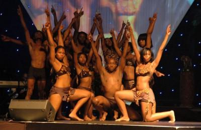 APA_2010