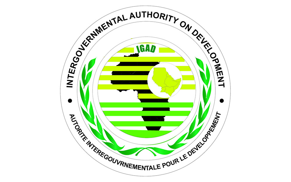 The Impasse in the Igad Peace Process for Sudan: The Limits of Regional Peacemaking?